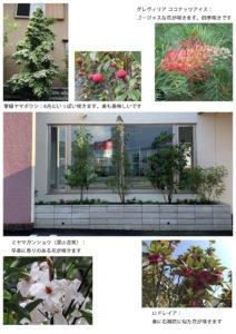 花木の説明